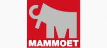 Mammoet Extended